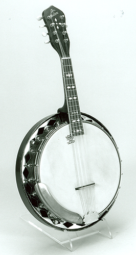 Mandolin vs Banjo