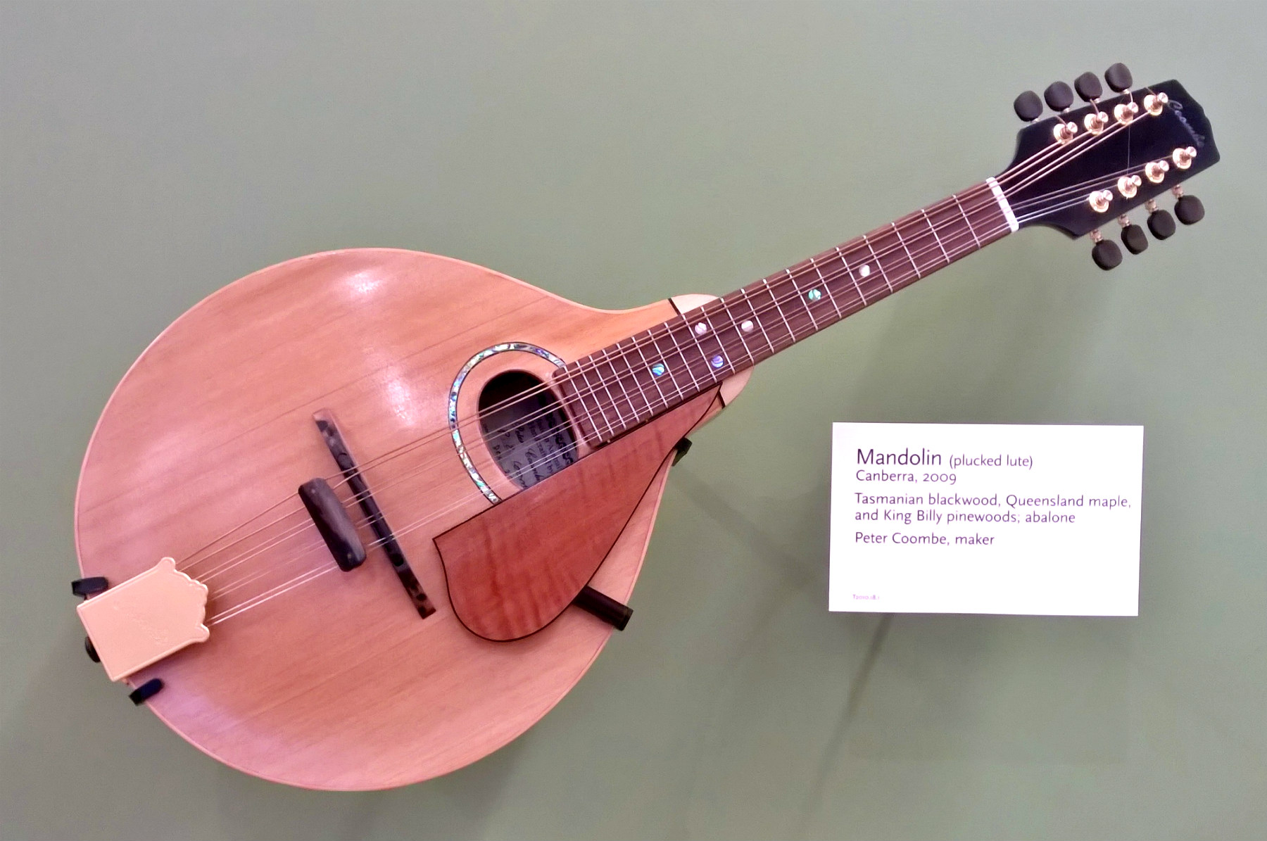 Building an octave mandolin click image for larger version name mim0415 coombeg views 81 solutioingenieria Images