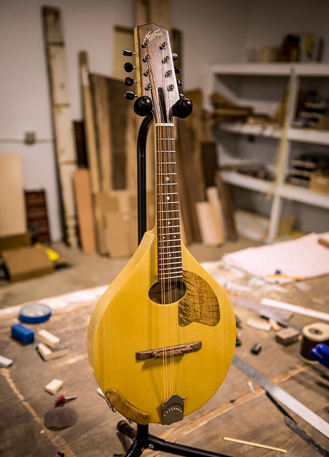 Northfield Budget Model Mandolin