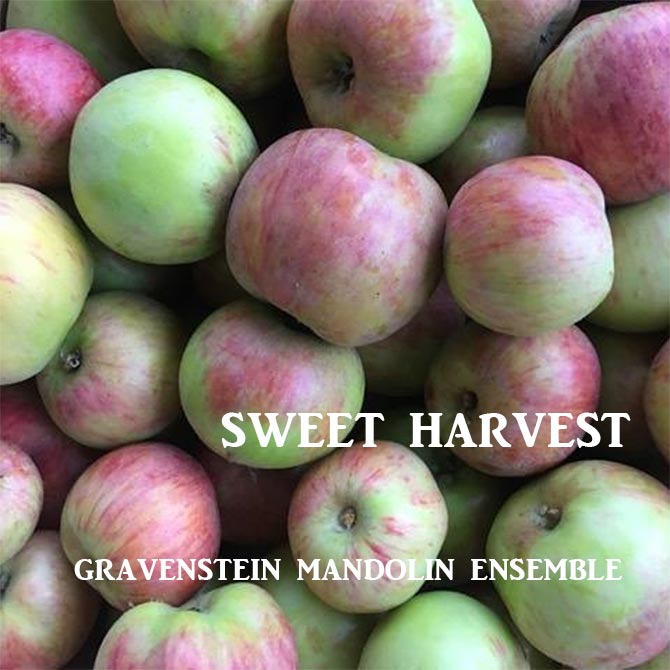 Gravenstein Mandolin Ensemble - Sweet Harvest