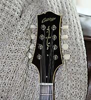 Click image for larger version.  Name:Collings3.jpg Views:69 Size:223.1 KB ID:170341