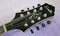 Click image for larger version.  Name:PP Headstock.jpg Views:11 Size:517.9 KB ID:193026