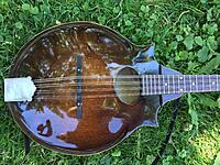 Click image for larger version.  Name:morris mandolin 2.jpg Views:63 Size:1.04 MB ID:186923