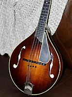 Click image for larger version.  Name:Collings1.jpg Views:91 Size:248.1 KB ID:170343