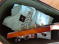 Click image for larger version.  Name:Collings MT2#2310.jpg Views:46 Size:505.0 KB ID:184321