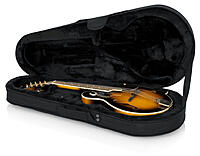 Click image for larger version.  Name:GL Mandolin case.jpg Views:45 Size:60.2 KB ID:194176