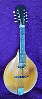 Click image for larger version.  Name:Mandola - Mandolin 01 - CU.jpg Views:42 Size:723.6 KB ID:195430
