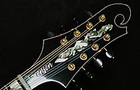 Click image for larger version.  Name:Headstock.jpg Views:261 Size:318.9 KB ID:148513