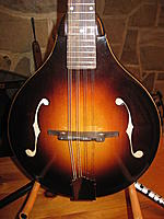 Mandolins I've Loved