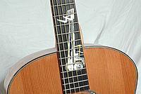 Click image for larger version.  Name:Taylor-Shop-Pallet-Guitar-Neck.jpg Views:31 Size:72.5 KB ID:185223