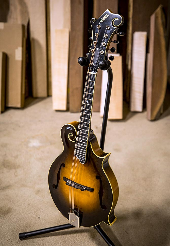 New Northfield F Mandolin