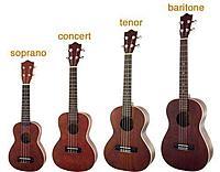 Click image for larger version.  Name:ukutabs-ukulele-sizes.jpg Views:2 Size:19.2 KB ID:180894