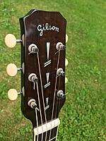 Click image for larger version.  Name:Alfred Borst headstock.jpg Views:44 Size:63.2 KB ID:193721