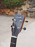 Click image for larger version.  Name:Headstock.jpg Views:286 Size:193.9 KB ID:126058