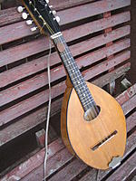 travel mandolin