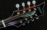 Click image for larger version.  Name:Headstock.jpg Views:241 Size:108.5 KB ID:125921