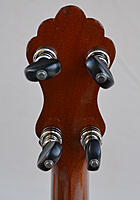 Click image for larger version.  Name:LyonAndHealy_Unmarked_5string_phdbk.jpg Views:32 Size:594.2 KB ID:187322