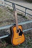 Click image for larger version.  Name:Couesnon 12 string.jpg Views:30 Size:46.2 KB ID:192762