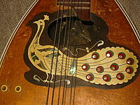 Click image for larger version.  Name:Peacock Mandolin 2.jpg Views:17 Size:347.4 KB ID:191655