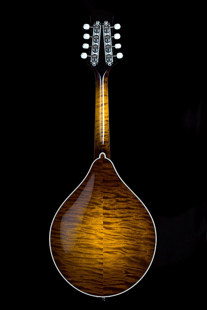 Collings MT2 Cremona Sunburst Finish Giveaway