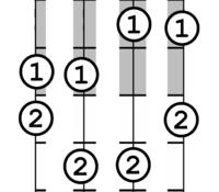 Click image for larger version.  Name:2_Finger_Basic.PNG Views:57 Size:45.9 KB ID:175185