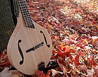 Click image for larger version.  Name:fall-mando1.jpg Views:159 Size:268.0 KB ID:63524