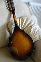 Click image for larger version.  Name:washburn mando 2.jpg Views:48 Size:56.0 KB ID:188874