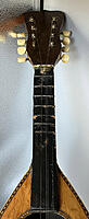 Click image for larger version.  Name:root-fretboard.jpg Views:21 Size:138.0 KB ID:189862