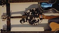 Click image for larger version.  Name:cowhide mandolin 90 degrees to the right.jpg Views:79 Size:955.9 KB ID:186161