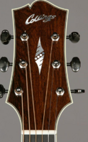 Click image for larger version.  Name:Collings Headstock.PNG Views:10 Size:291.6 KB ID:187528