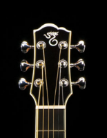 Click image for larger version.  Name:SCG Headstock.PNG Views:11 Size:72.6 KB ID:187529