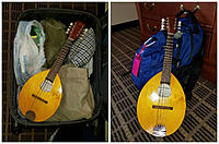 Click image for larger version.  Name:Haywood Suitcase Mandolin 5 Collage.jpg Views:51 Size:969.4 KB ID:172855