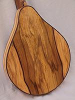 Click image for larger version.  Name:flattop-mandolin-back.JPG Views:18 Size:425.9 KB ID:186120