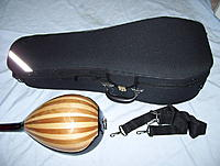 Click image for larger version.  Name:violinking_case.jpg Views:81 Size:53.6 KB ID:150294