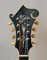 Click image for larger version.  Name:headstock-2.jpg Views:16 Size:132.1 KB ID:183731