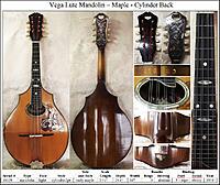 Click image for larger version.  Name:36029 Vega Maple Mandolin -composite.jpg Views:30 Size:472.4 KB ID:196108