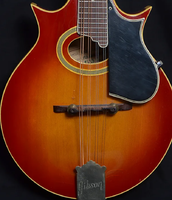 Click image for larger version.  Name:2019-07-19 15_44_57-Gibson A-5 _Jethro Burns_ Mandolin 1969 _ Reverb.png Views:98 Size:1.00 MB ID:178396