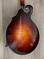 Click image for larger version.  Name:2013 Gibson F5 Fern back body.jpg Views:76 Size:143.4 KB ID:186312