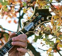 Click image for larger version.  Name:John Denver's Mandolin.jpg Views:181 Size:94.5 KB ID:141145