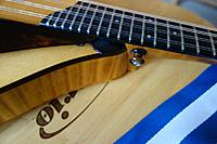Click image for larger version.  Name:Collings strap button.jpg Views:43 Size:144.8 KB ID:184110