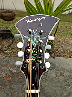 Click image for larger version.  Name:headstock 100.jpg Views:161 Size:291.1 KB ID:165946