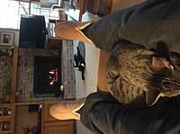 Click image for larger version.  Name:Cats are relaxed-2.jpg Views:13 Size:182.2 KB ID:172866