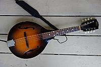 Click image for larger version.  Name:1935 Gibson A50 front resized.jpg Views:23 Size:142.4 KB ID:179438