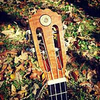 Click image for larger version.  Name:CBUHeadstock.jpg Views:5 Size:58.4 KB ID:179634