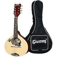 Click image for larger version.  Name:givson-8-string-acoustic-mandolinjj.jpg Views:108 Size:61.2 KB ID:152288