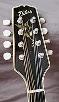 Click image for larger version.  Name:Hummingbird headstock 1 cropped.jpg Views:235 Size:1.09 MB ID:194682