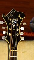 Click image for larger version.  Name:F5 mandolin headstock (2).jpg Views:196 Size:591.6 KB ID:193977