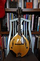 Click image for larger version.  Name:Collings MT front resized 12 31.jpg Views:20 Size:1.08 MB ID:190977