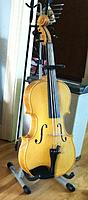 Click image for larger version.  Name:5-string octave viola.jpg Views:168 Size:333.0 KB ID:152008