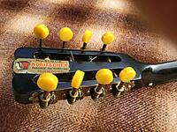 Click image for larger version.  Name:mandolin buttons back.jpg Views:13 Size:326.6 KB ID:193096